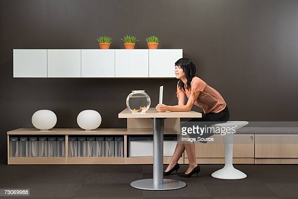 woman watching fish in office - feng shui stock photos and pictures