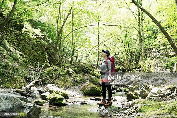 Woman watching forest at river side.