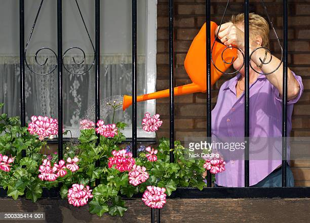 Woman watering geraniums, face obscured, view through metal grating
