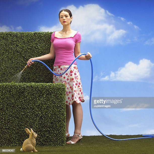 woman watering hedges with hose - hairy bush stock pictures, royalty-free photos & images
