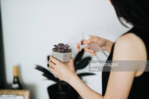 woman watering plants at home - シンプルな暮らし ストックフォトと画像