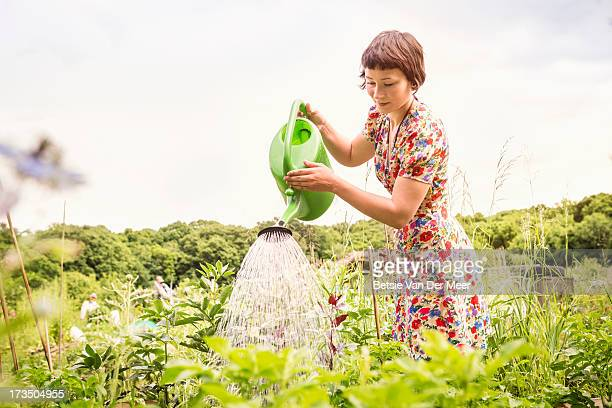 Woman watering plants in allotment.