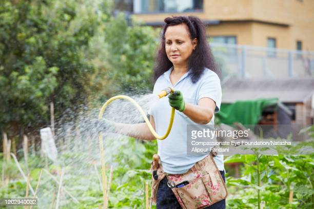 woman watering plants in community garden - compassionate eye foundation stock pictures, royalty-free photos & images
