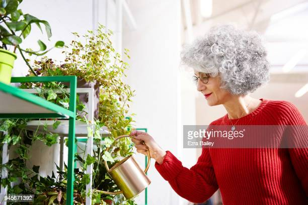 Woman watering plants in creative office space.