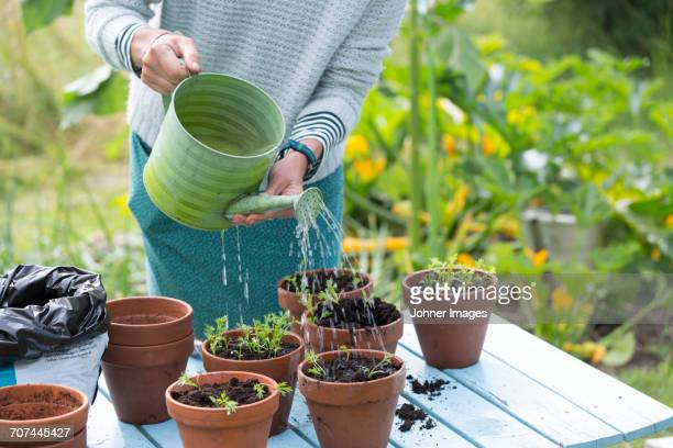 Woman watering plants in pots