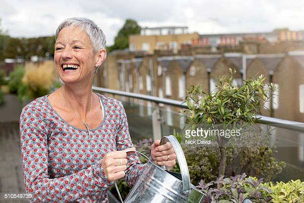 woman watering plants on roof garden - silver blouse stock pictures, royalty-free photos & images
