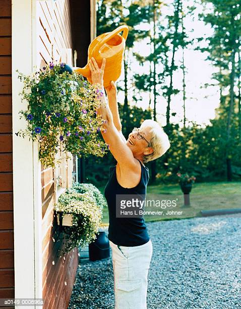 woman watering plants - hanging basket stock pictures, royalty-free photos & images