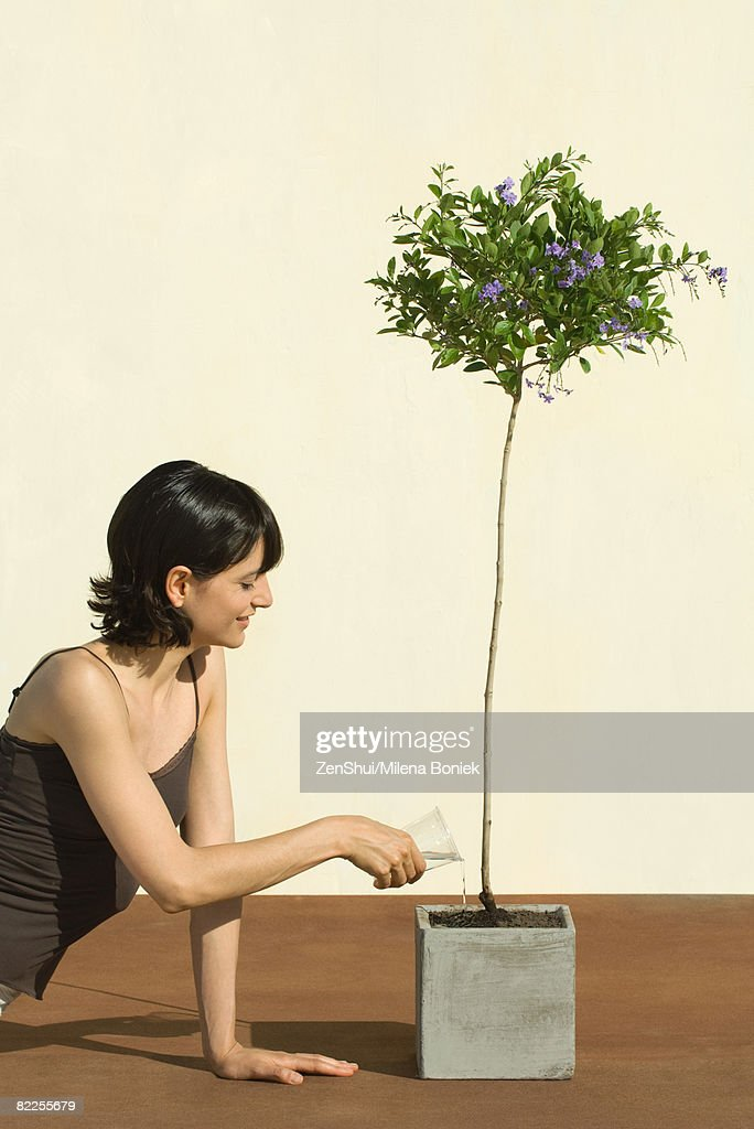 Woman watering potted plant, smiling : Stock Photo