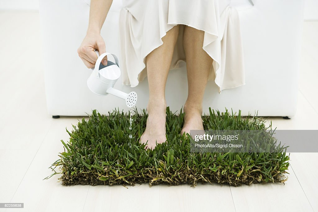Woman watering small patch of grass with watering can, cropped view : Stock Photo