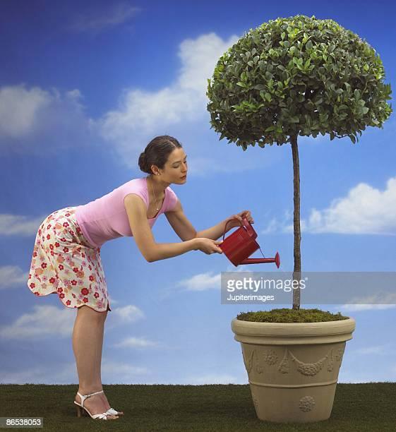 Woman watering topiary