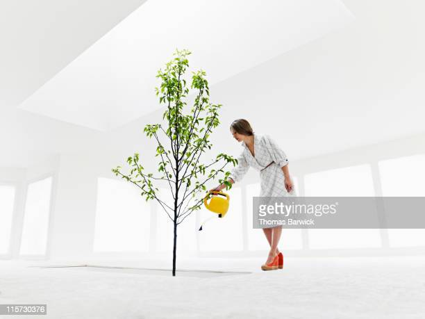 Woman watering tree growing from stairwell