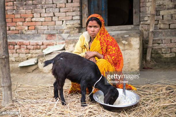 A woman wearing a colorful sari is feeding a young goat in front of a old house