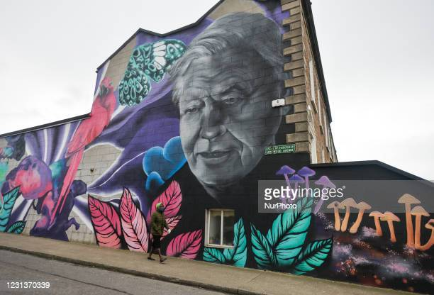 Woman wearing a face mask walks by a mural of David Attenborough by the artist collective SUBSET seen on the side of a property in south Dublin...