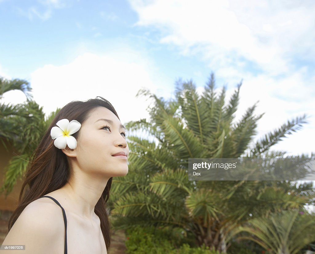Woman Wearing a Flower in Her Hair : Stock Photo