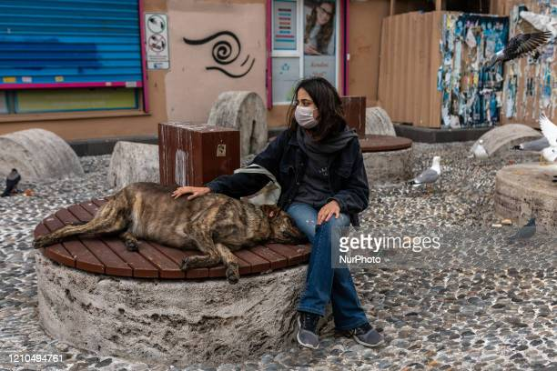 Woman wearing a protective face mask petting a street animal seen on April 20, 2020 in Istanbul, Turkey. The health minister reported that total...