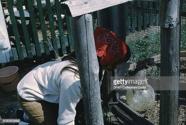 Woman wearing a red handkerchief on her head kneeling down looking at a lizard in a cage 1966
