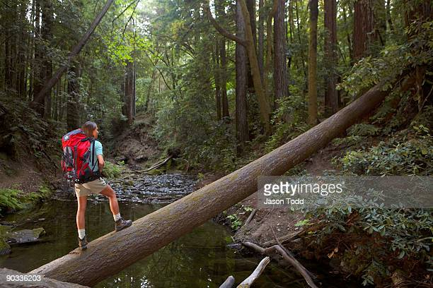 woman wearing hiking backpack crossing fallen tree - jason todd stock photos and pictures