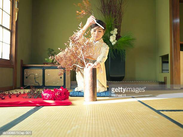 woman wearing kimono putting flowers into vase - ikebana stock pictures, royalty-free photos & images