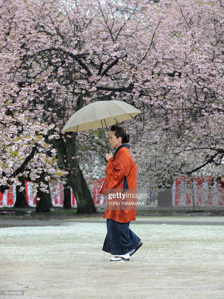 A woman wearing kimono walks on a snow-clad garden under blossoming cherry trees before a garden party hosted by Prime Minister Yukio Hatoyama in Tokyo on April 17, 2010. Unseasonable snow fell in central Tokyo on as temperatures plunged in mid-spring, matching the 1969 record for the season's latest snowfall. AFP PHOTO/Toru YAMANAKA