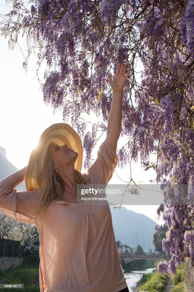 Frau mit Sonnenhut reicht bis Glyzinien Busch : Stock-Foto
