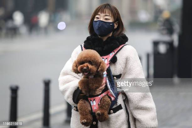 A woman wears a mask while carrying a dog in the street on January 22 2020 in Wuhan Hubei province China A new infectious coronavirus known as...