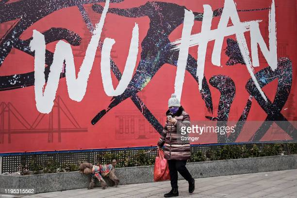 A woman wears a mask while walking a dog on January 22 2020 in Wuhan Hubei province China A new infectious coronavirus known as 2019nCoV was...