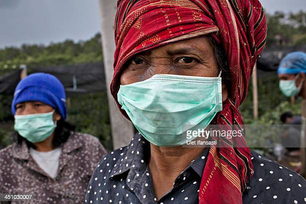 A woman wears a mask while work at a coffee plantation in Guru Kinayan village located just less than three kilometers from mount Sinabung on...