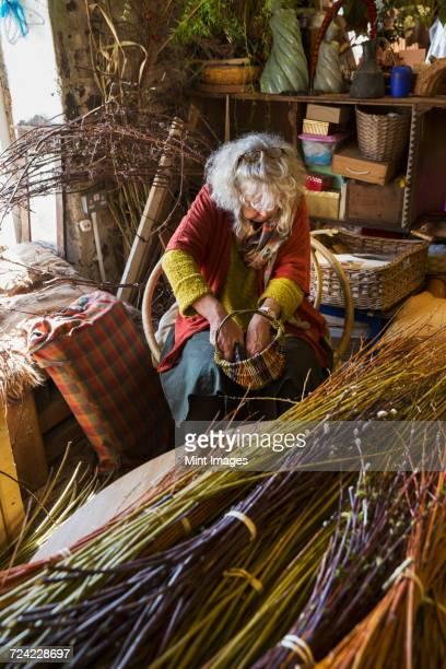 Woman weaving a basket in a weavers workshop, bundles of willow.