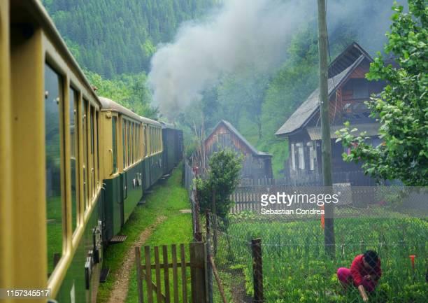 woman who cares for agriculture very close to the train mocanita steam train driver in viseu de sus, maramures, romania - roménia imagens e fotografias de stock