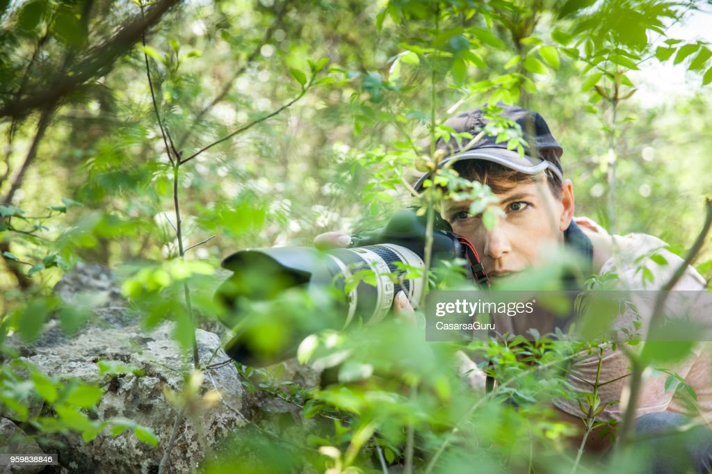 Frau Wildlife Fotograf warten im Gebüsch : Stock-Foto
