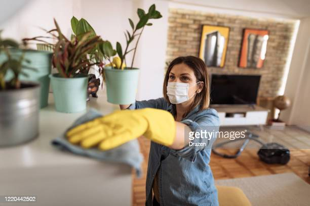 woman wiping dust from shelf and other furniture in living room - clean stock pictures, royalty-free photos & images
