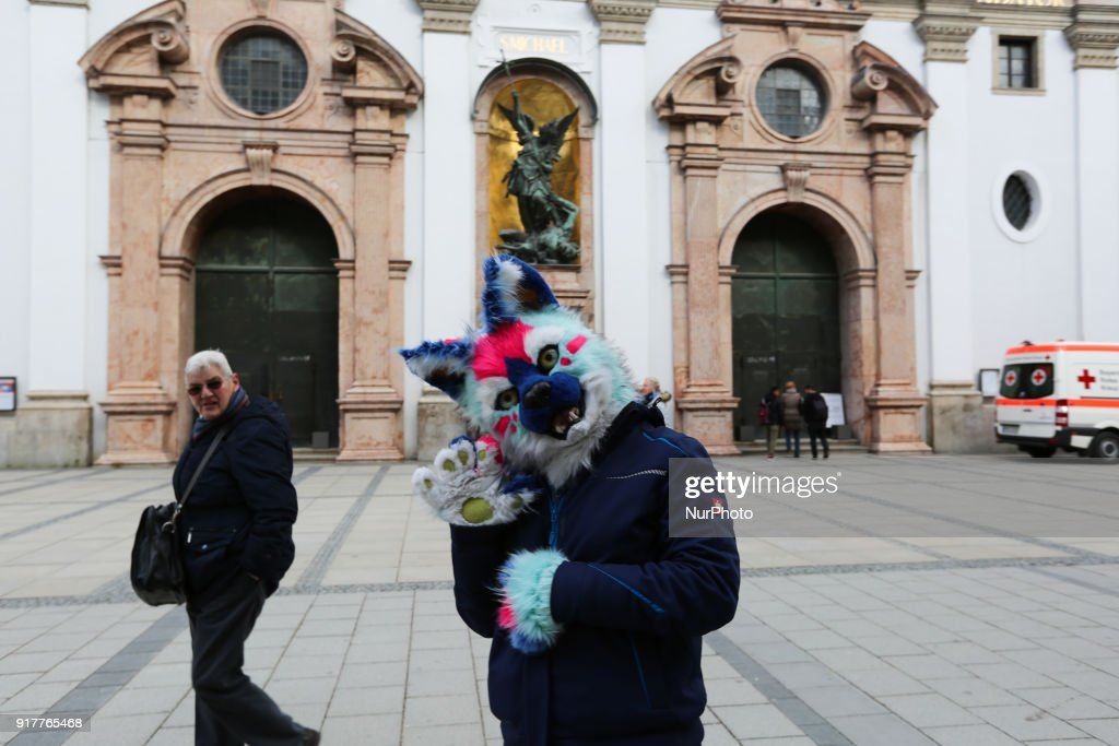 A woman with a cat costume is seen in the Munich Carnival, in Munich, Germany, on 13 February, 2018.