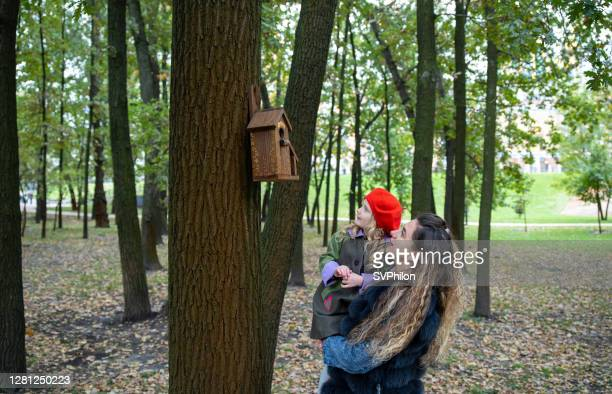 a woman with a child is inspecting a birdhouse in the park. - 2 5 months stock pictures, royalty-free photos & images