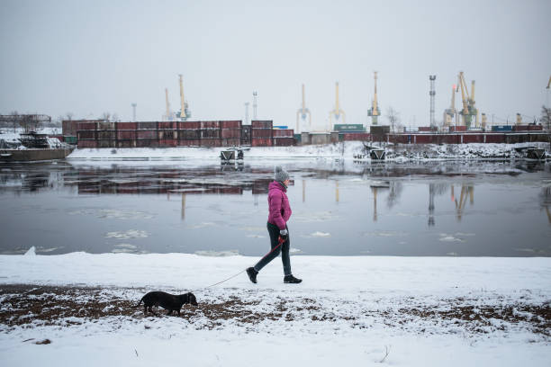 Weather in russia photos and images getty images a woman with a dog walks along the waterfront the temperature on 21 january 2018 publicscrutiny Gallery
