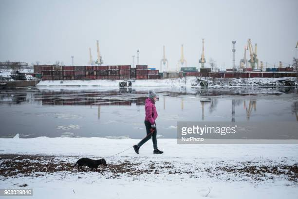 A woman with a dog walks along the waterfront The temperature on 21 January 2018 in St Petersburg Russia fell to 11 degrees