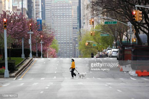 A woman with a face mask crosses a street with her dog on Park Avenue remaining nearly empty due to coronavirus pandemic in New York City United...