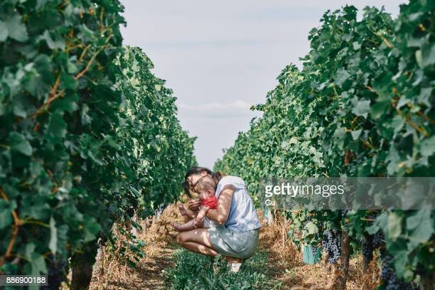 Woman with baby daughter in vineyard, Bergerac, Aquitaine, France