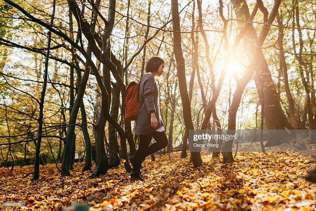 Woman with back pack walking through woodland : Stock Photo