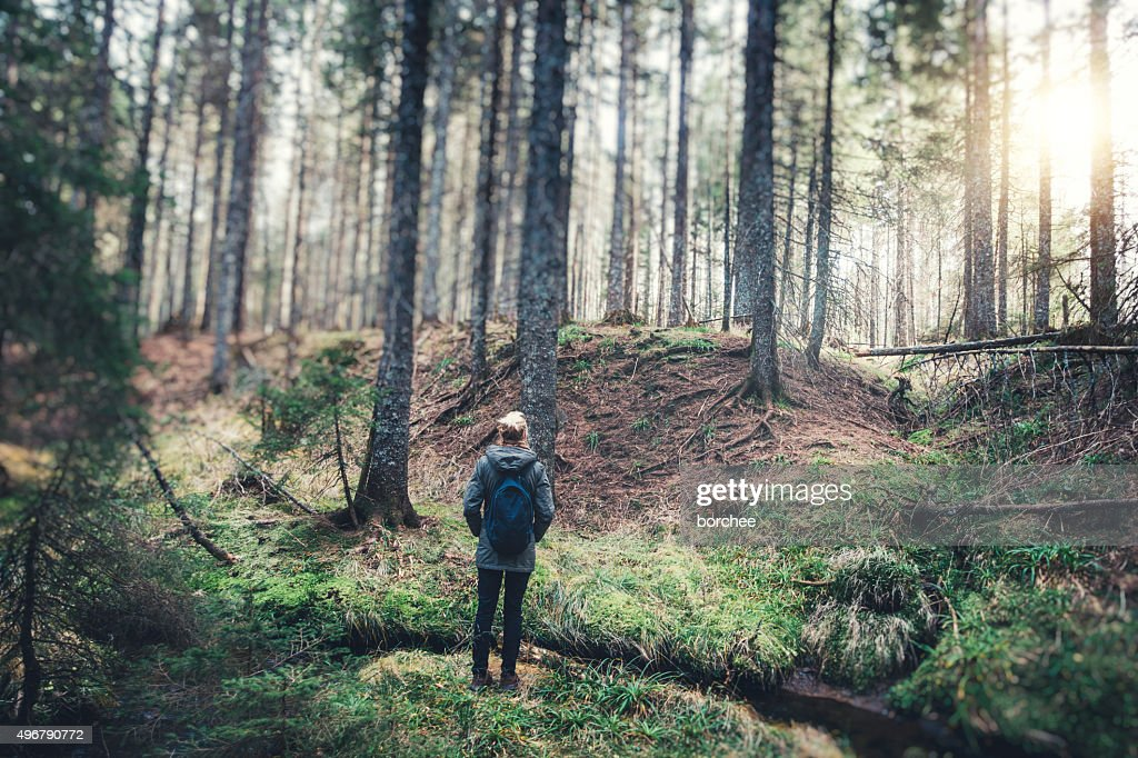 Woman With Backpack Hiking In The Forest : Stock Photo