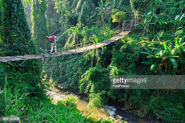 woman with backpack on suspension bridge in rainforest - hängbro bildbanksfoton och bilder