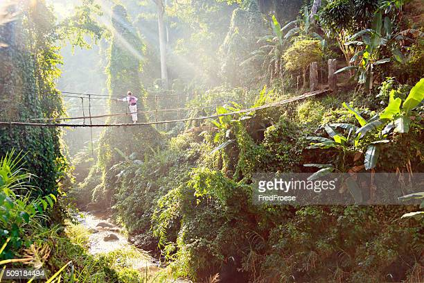 Woman with backpack on suspension bridge in rainforest