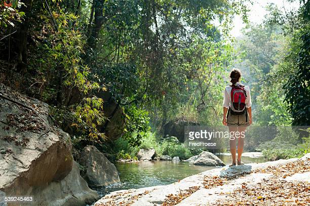 Woman with backpack trekking in rainforest