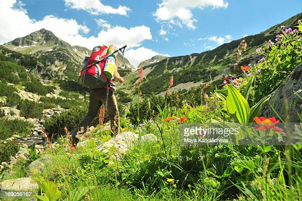 Woman with backpack trekking in summer