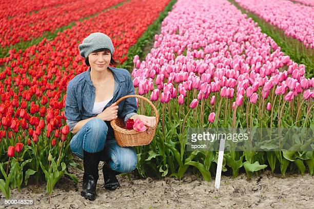 Woman with basket on a tulip field in Netherlands.