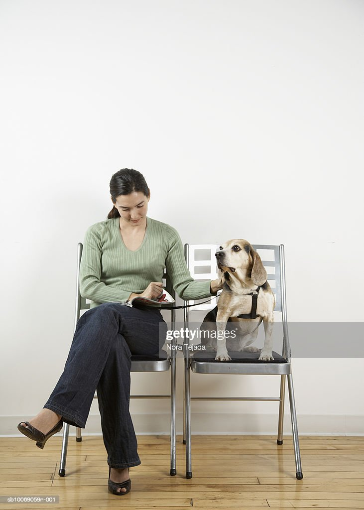 Woman with Beagle in waiting room : Stockfoto