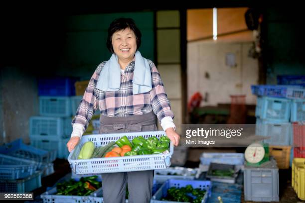 woman with black hair wearing checkered shirt standing in front of barn, holding blue plastic crate with fresh vegetables, smiling at camera. - disruptaging stock photos and pictures
