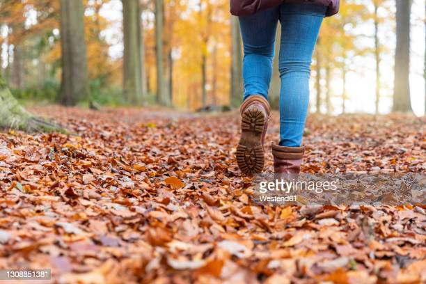 woman with boots walking on autumn leaves in forest - boot stock pictures, royalty-free photos & images