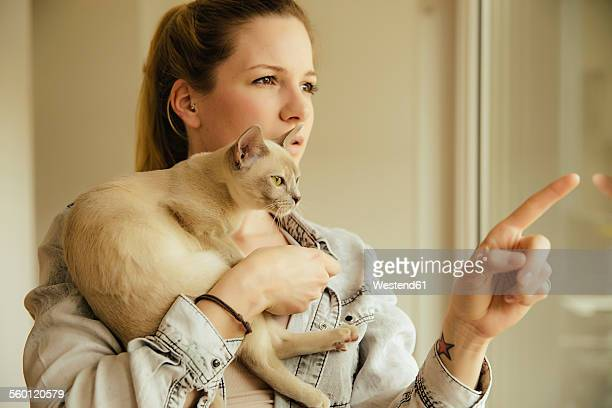 woman with burmese cat at the window - burmese cat stock pictures, royalty-free photos & images