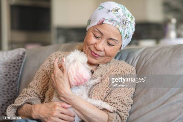 woman with cancer relaxes at home with her pet dog - domestic animals stock pictures, royalty-free photos & images