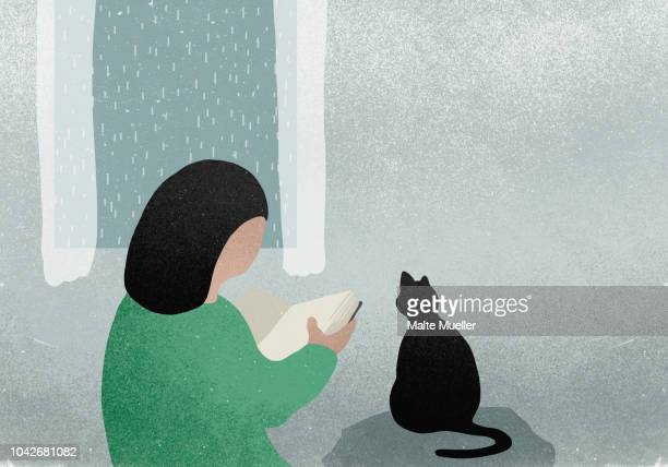 woman with cat reading book next to rainy window - illustration stock pictures, royalty-free photos & images
